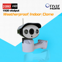 Pan/Tilt POE IP Camera Outdoor 1080P Full HD with TF/Micro